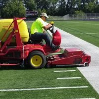 Synthetic grasses prove efficient in cost and maintenance!