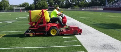 Synthetic grasses prove efficient