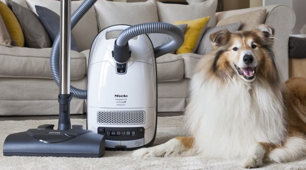 Need of having a pet vacuum