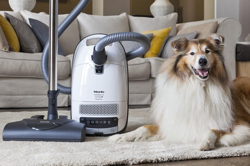 Need of having a pet vacuum