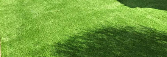 Treat Your Home With Natural Looking Greenery Of The Plastic Turf: Know The Actual Artificial Turf Prices