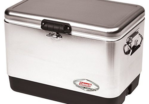 Keep your food fresh by using the best cooler