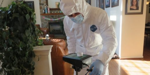 How to find the signs of mold in my home