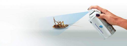 Get Rid Of Mosquito Bites Eradicate These Tiny Vampires