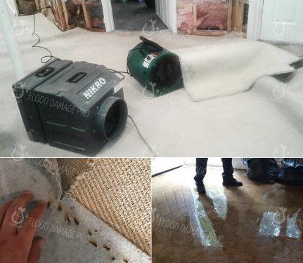 Flood Damage Pro in Reston, VA