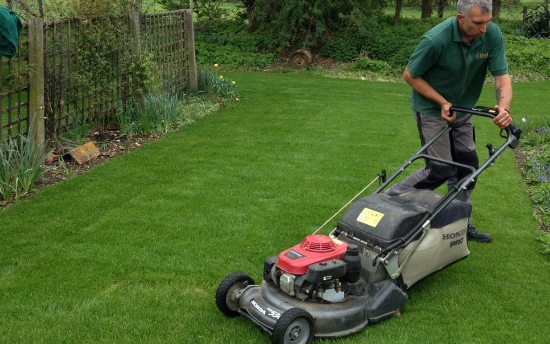 Different Factors That Helps To Choose The Perfect Finishing Mower